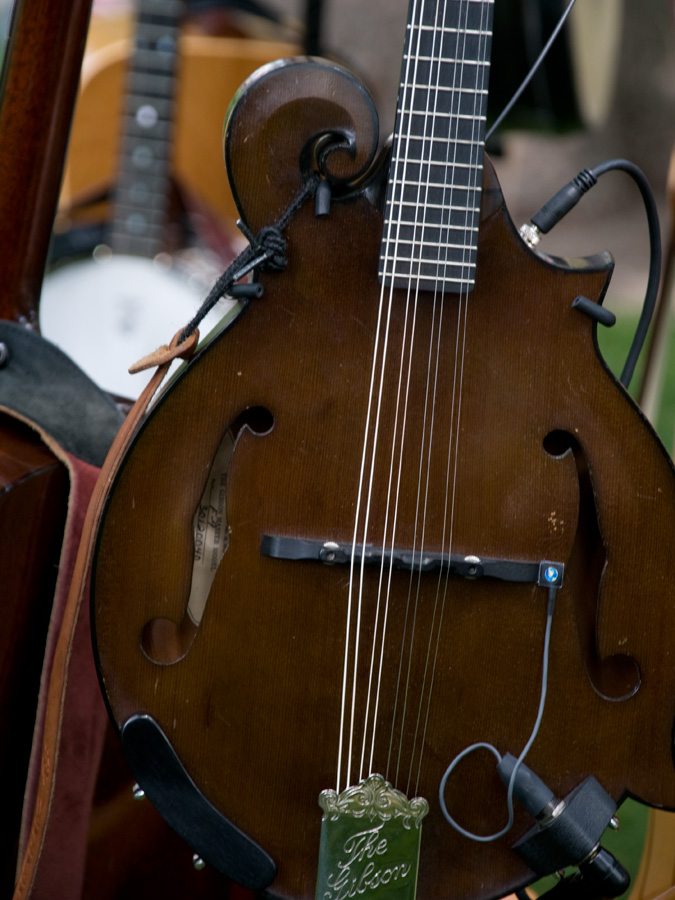 A picture of a mandolin at the celebration.