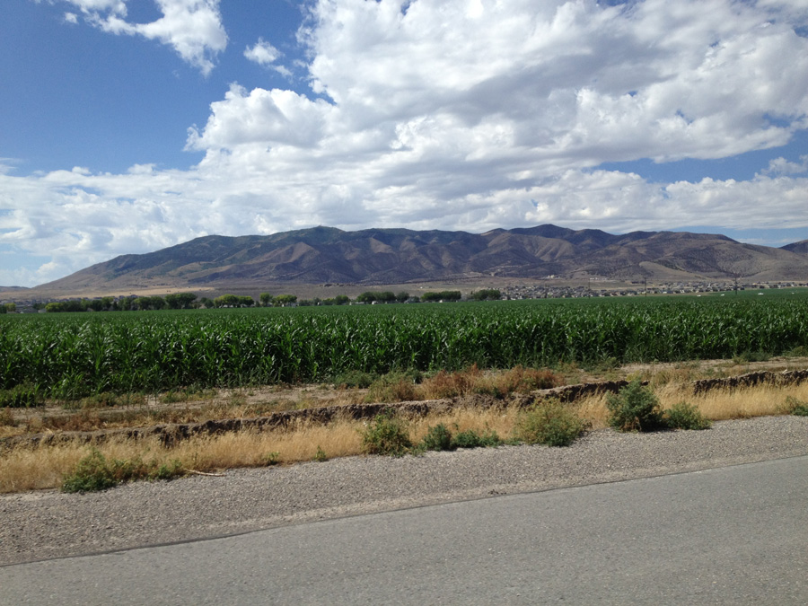 We decided to ride around Utah Lake and on the way there, passed some crops.
