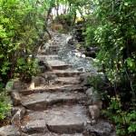 steps into serenity