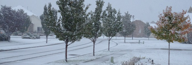 As you can see, the ground was blanketed with snow. It was an amazing sight.