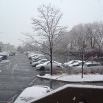 At work, I took this picture, after the snow was falling, and then in a couple of hours...