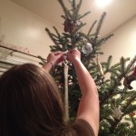 And the ornaments were hung from the Christmas Tree with care