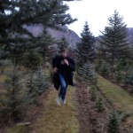 Sherlock, I mean Kas, hot on the trail of those tree nappers, and they will not get away from him